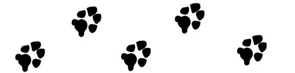 ttp://www.dog-paw-print.com/image-files/dog-paw-print-divider-right.jpg