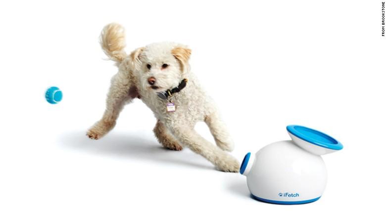 150827194141-03-tech-pet-toys-ball-launcher-jpg-exlarge-169.jpg