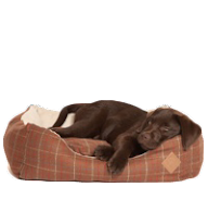 Luxury Puppy Beds Stylish Beds For Puppies