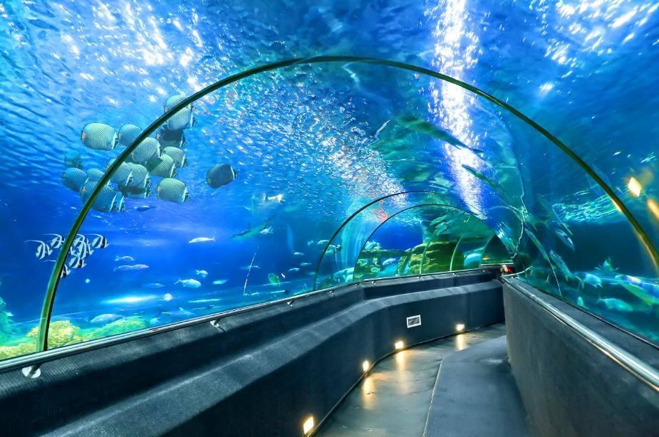 Vinpearl-Land-Nha-Trang-aquarium