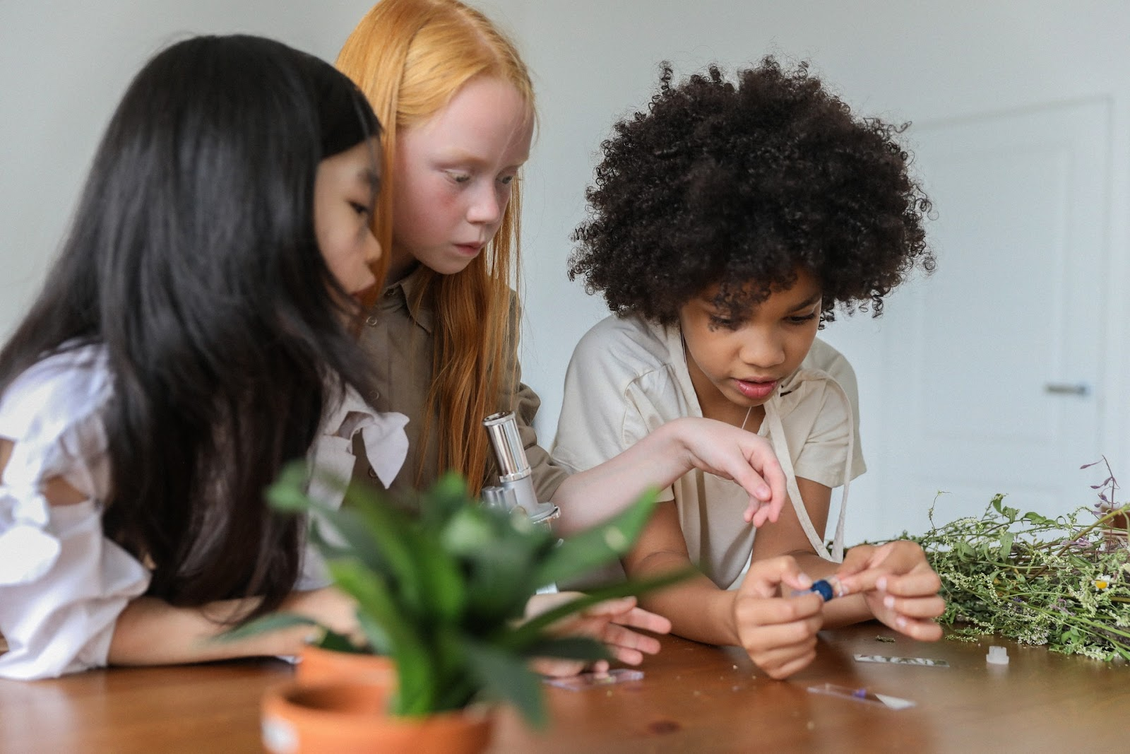 Three young girls have a microscope and seem to be investigating plant life at a table.