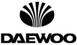 Daewoo is one of the leading semiconductors companies in Vietnam