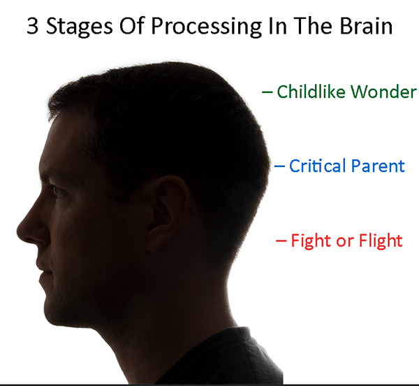 3-stages-processing-brain.jpg