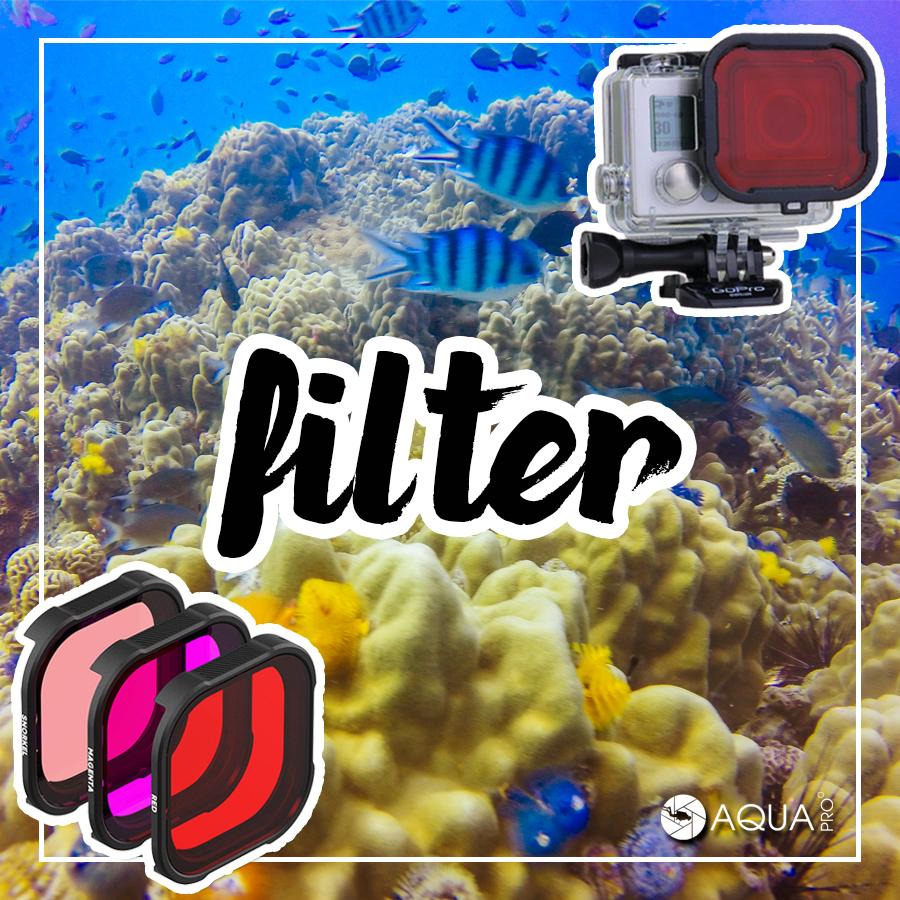 ถ่ายใต้น้ำ - filter