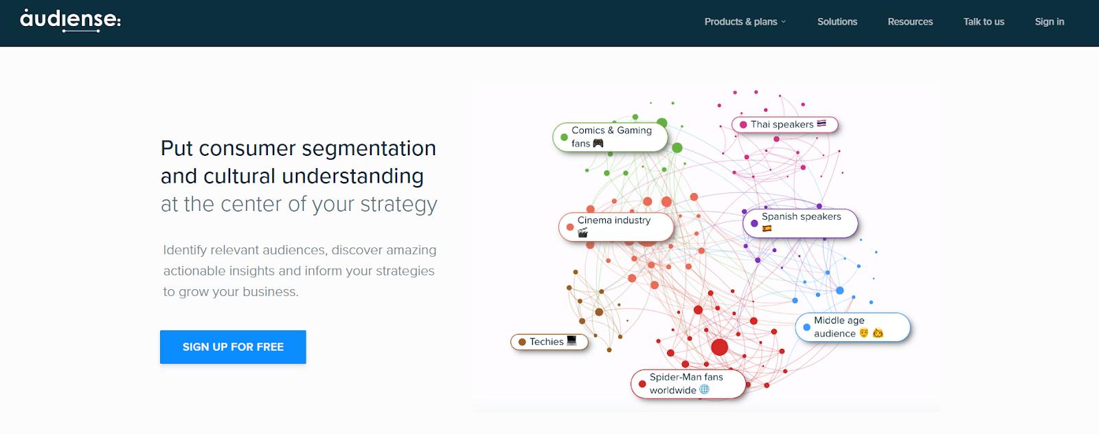 audience segmentation and analytics