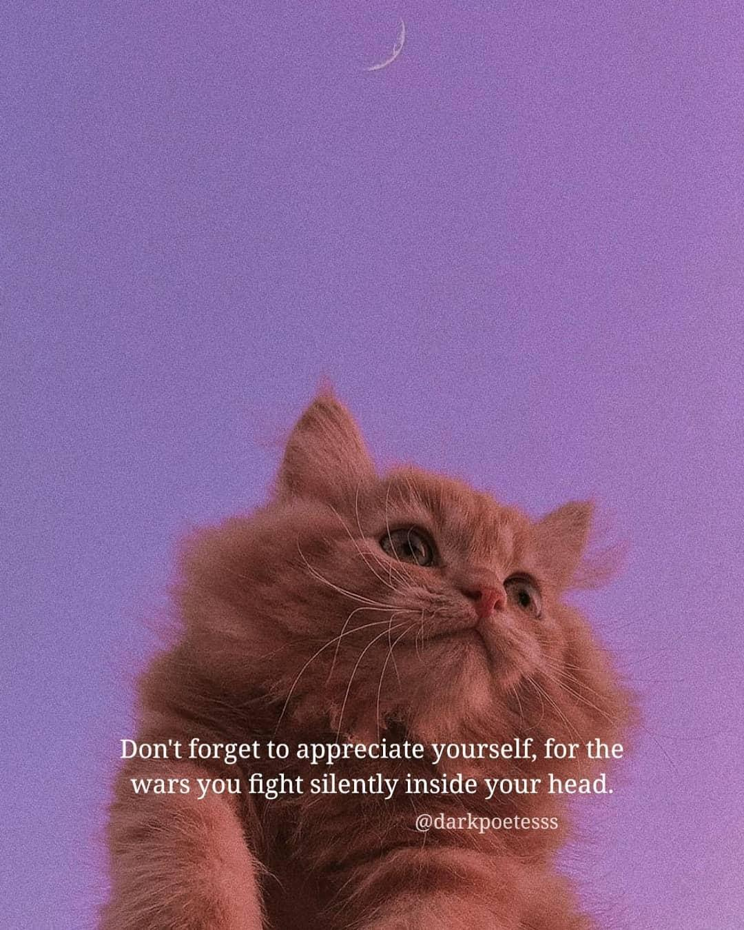 Deep Aesthetic Quotes