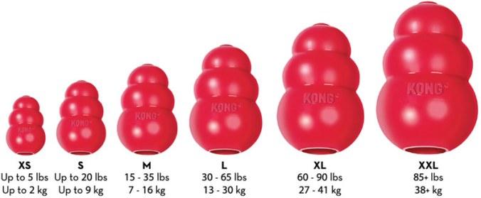 Kong para perros - Tamaños Kong pulgadas