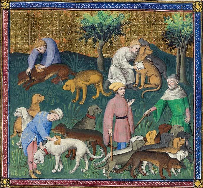 Средневековый мир собак 6