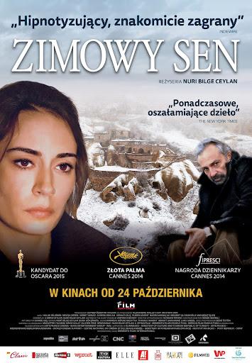 Polski plakat filmu 'Zimowy Sen'