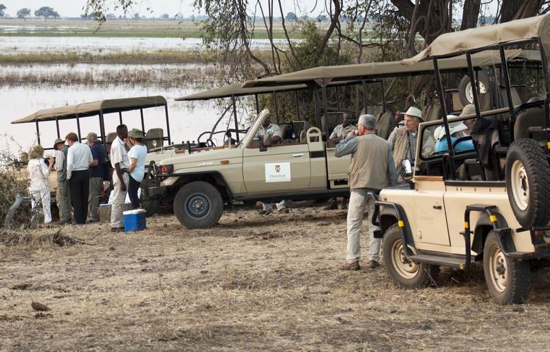 Chobe-game-drive-meeting.jpg