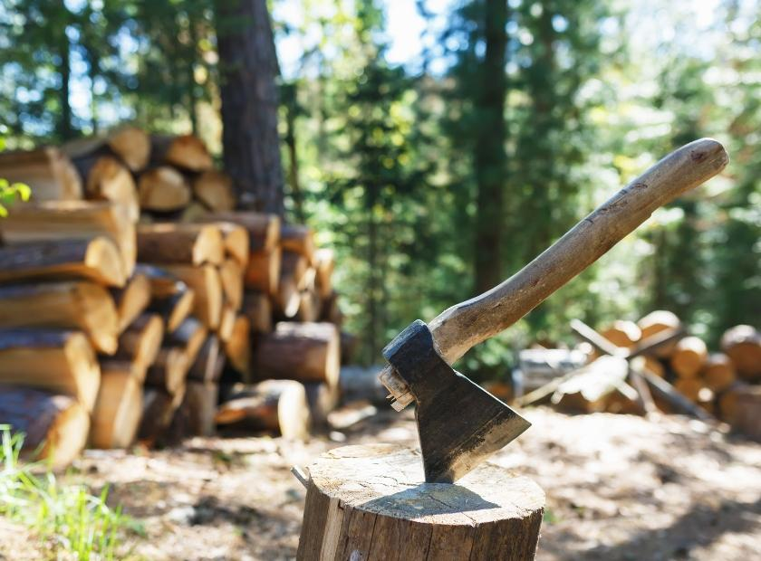 C:\Users\PC\Downloads\How-to-split-wood-safely.jpg