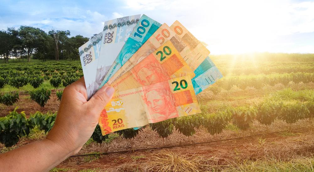 Crédito agropecuário tem crescido nesta safra. (Fonte: Shutterstock/Andre Nery/Reprodução)