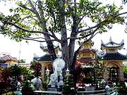 Chau Doc - Bồ Đề Đạo Tràng_).jpg