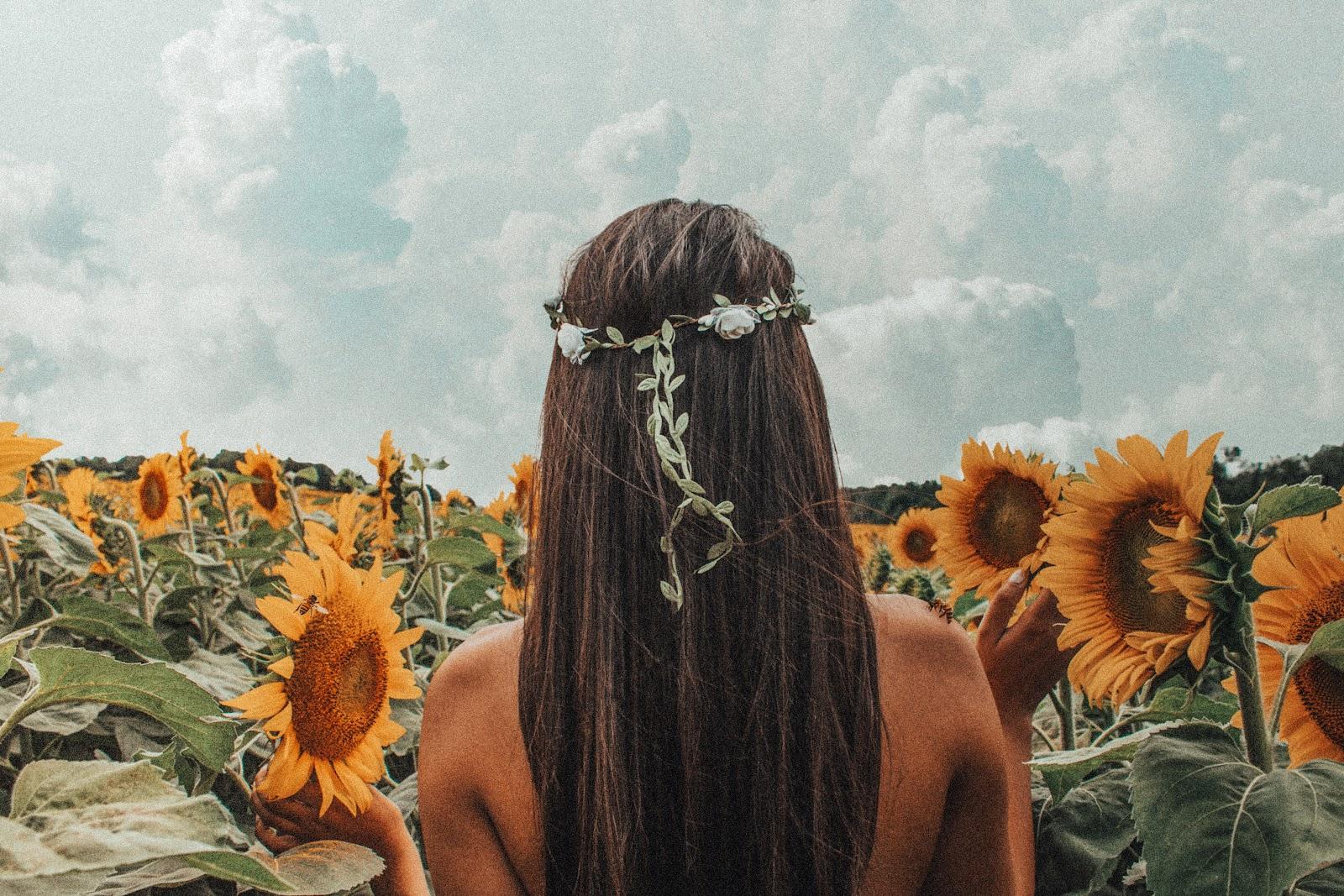 A hippie walks through a field of sunflowers.