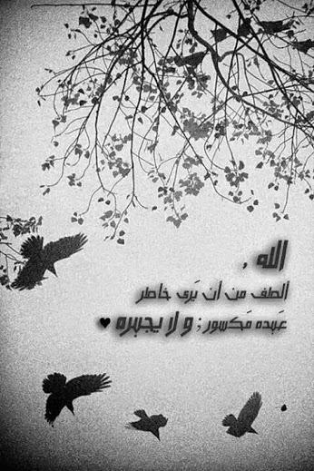 صباح الأمنيات الجميل ejluh_YNjXb59l8PADlD