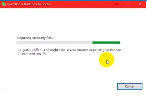 Repairing company file
