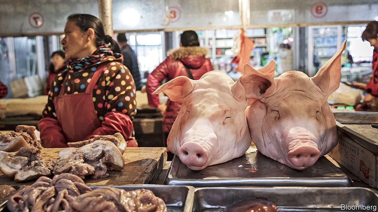 ¿Se desató una nueva enfermedad en China?