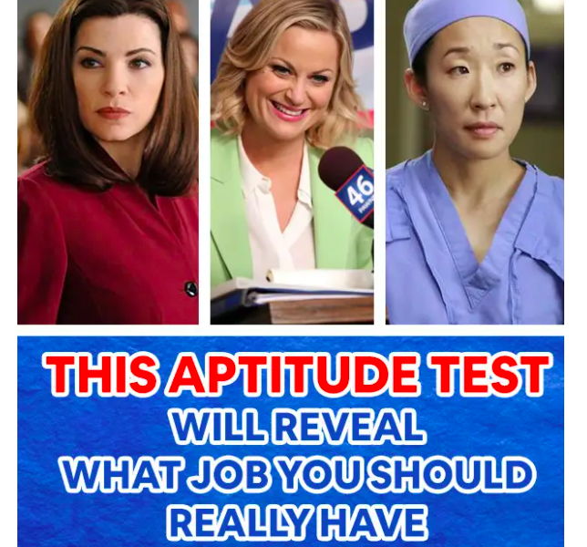 career quiz with TV show characters that have different jobs