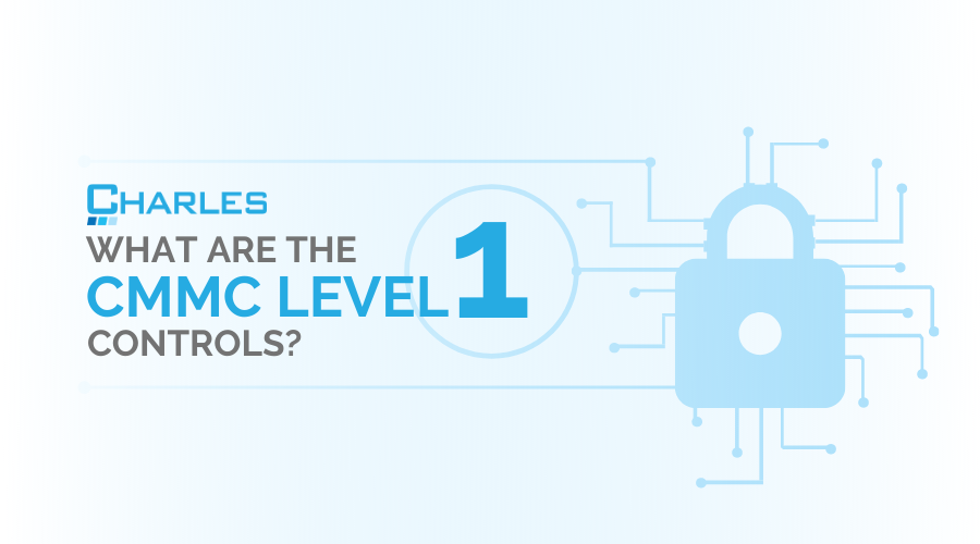 What are the CMMC Level 1 Controls?