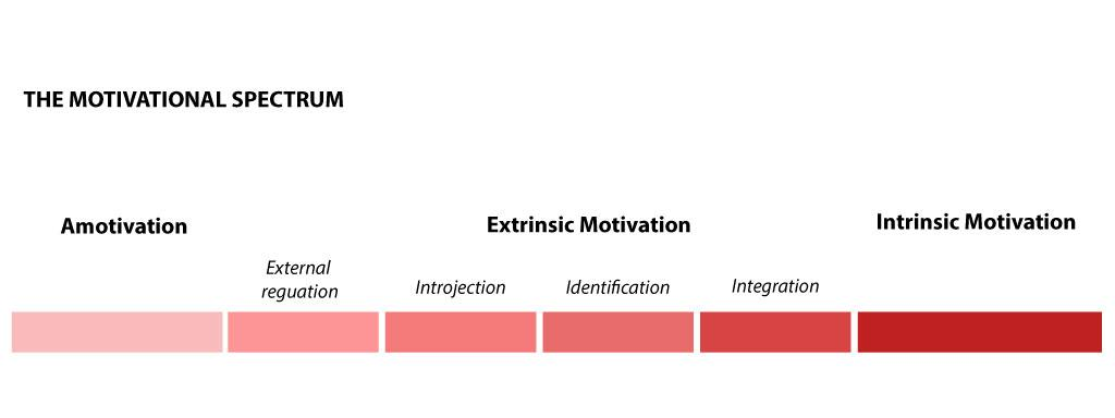 The Motivational Spectrum | Valerie Low