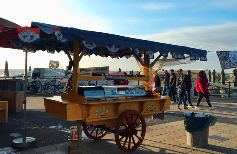 herring cart scheveningen activity