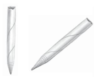 Gốc bút chì than chì