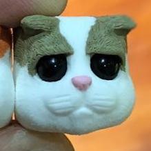 DCcaps - Sad Cat -