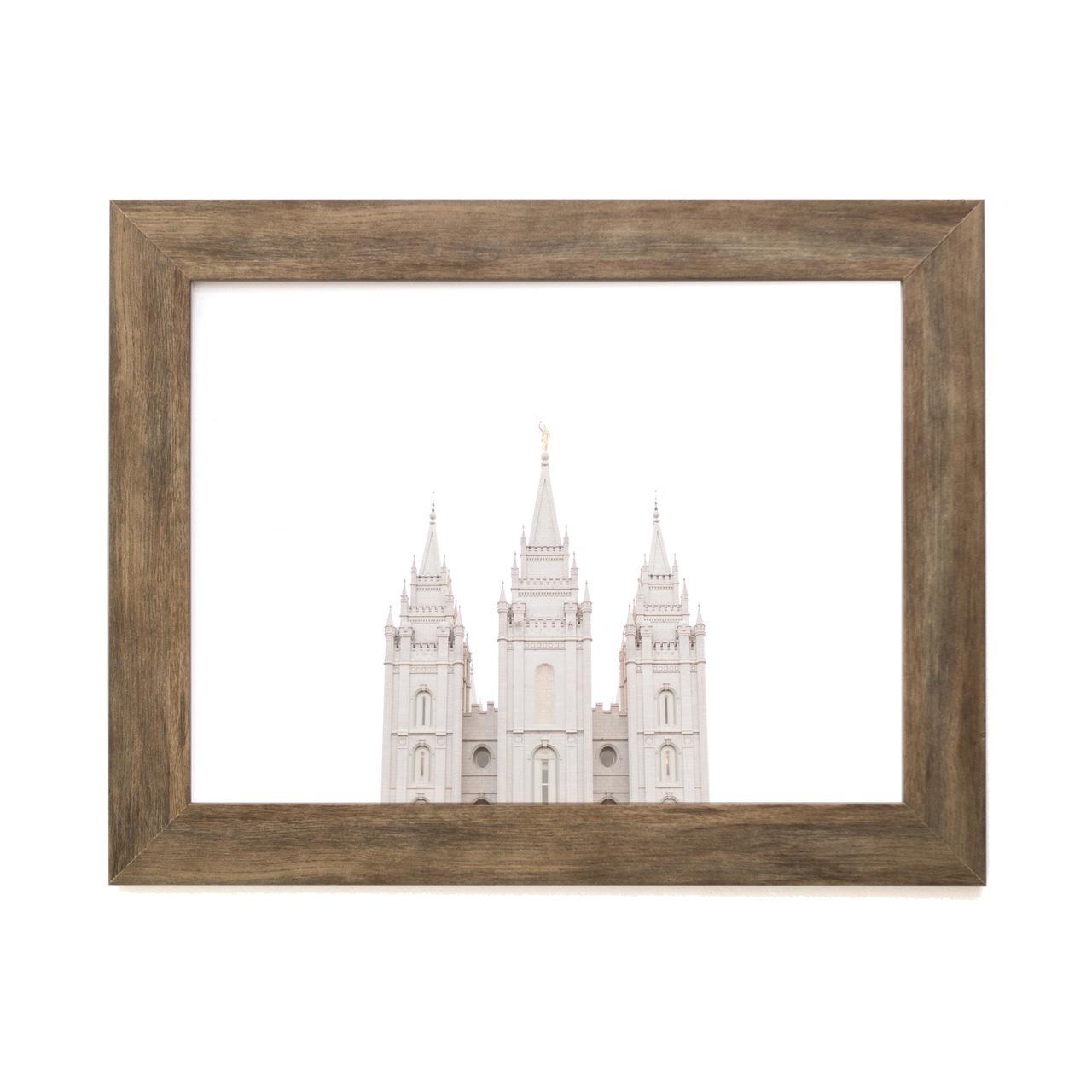 Salt Lake City Temple Top