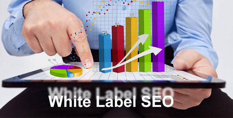 What Do You Need to Know About White Label SEO