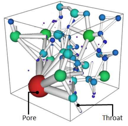 A pore network extracted from a 3D image.