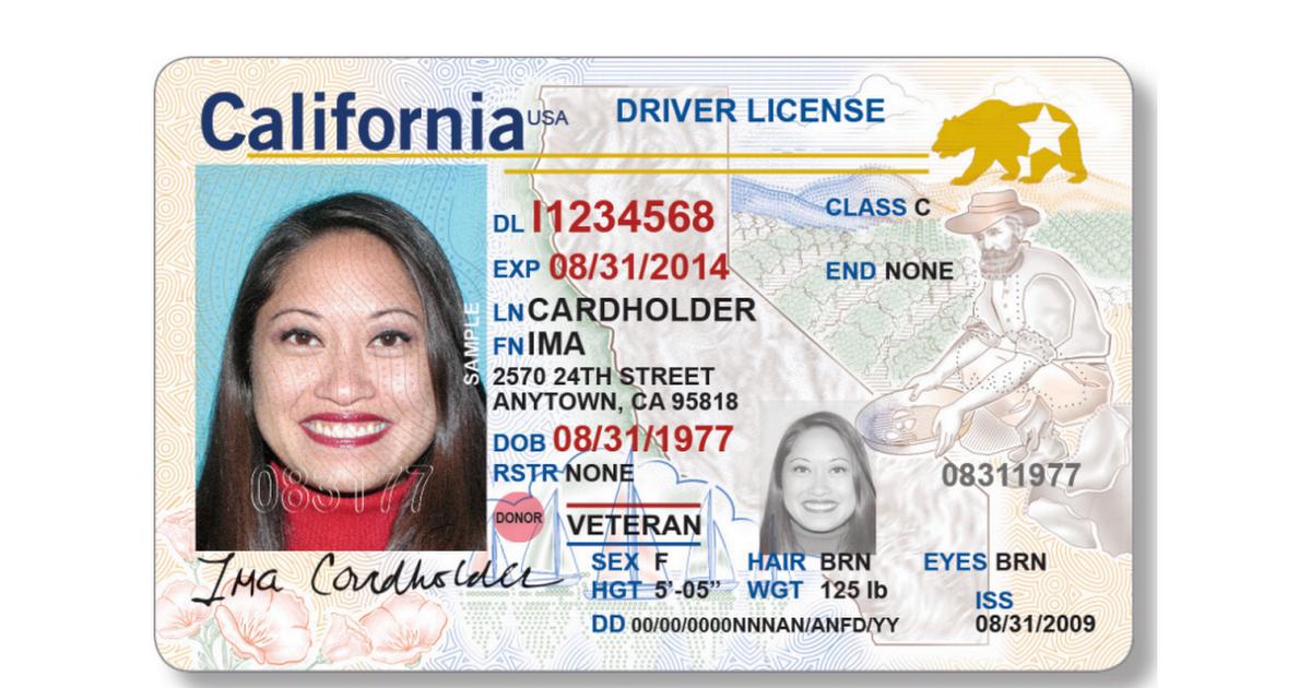 Ocrolus Sample PDF - Identification Verification (Driver's License).pdf