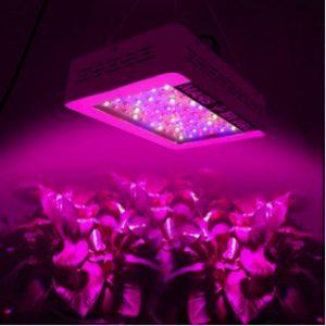 Quality of Mars Hydro 300W Grow light