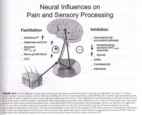 Neural Influences on Pain and Sensory Processing
