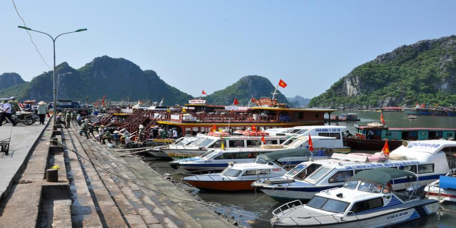 Tour.pro.vn – Đơn vị tổ chứcđặt tour du lịch Cô Tôuy tín số 1 tại Việt Nam