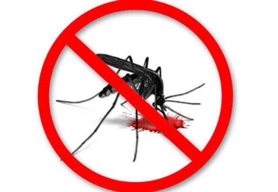 Địa chỉ cung cấp dịch vụ phun muỗi uy tín chất lượng