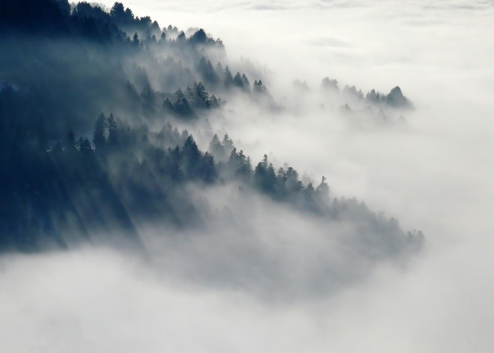 fog for fog computing example