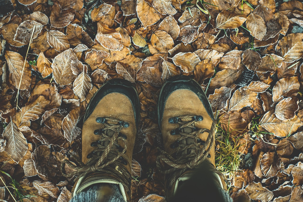 Close-up of hiking shoes standing on fallen leaves