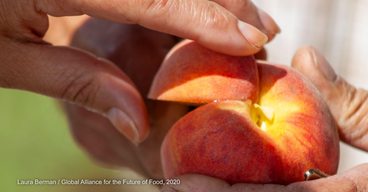 Opinion: Stories about food systems and why they matter