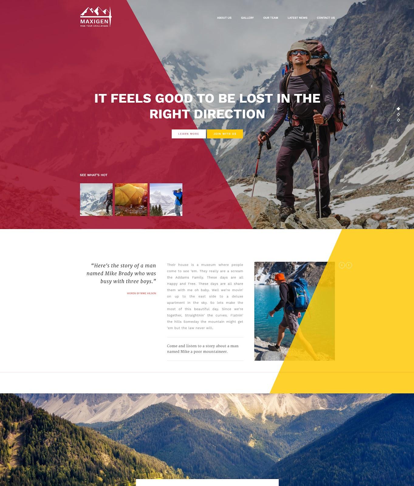 Maxigen Theme For WordPress