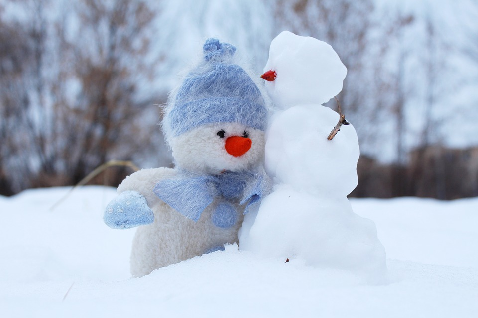 Snowman, Snow, Two, Winter, Friends, New Year'S Eve
