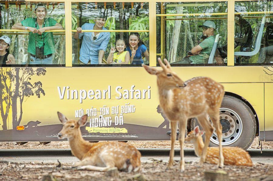 Vinpearl Safari Phú Quốc 04
