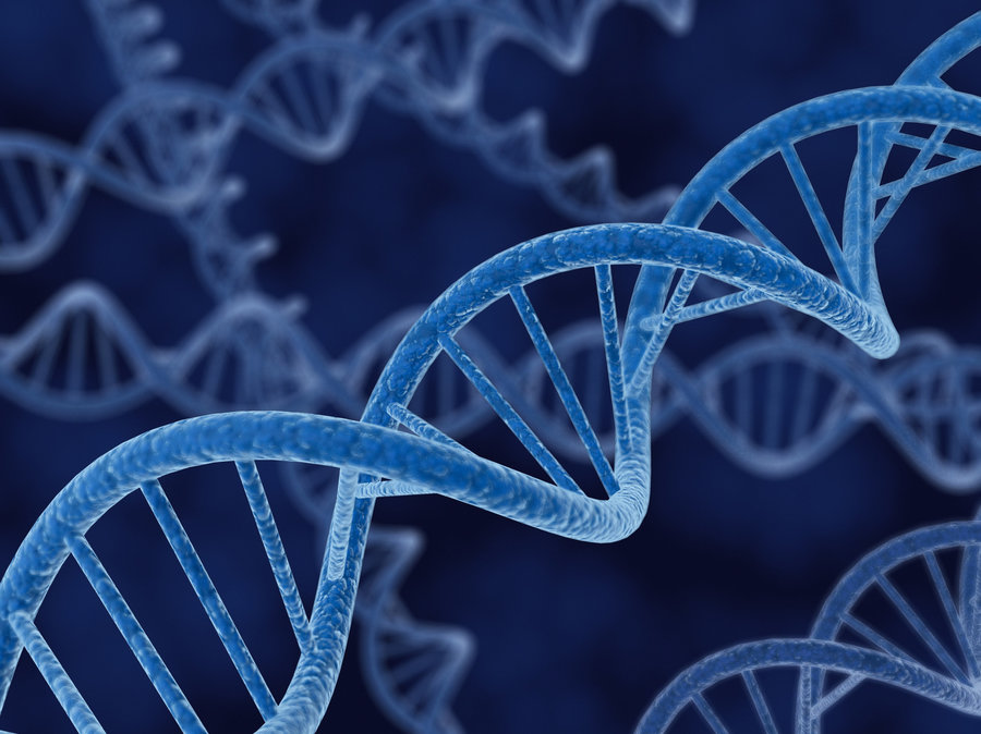 Image result for genetic