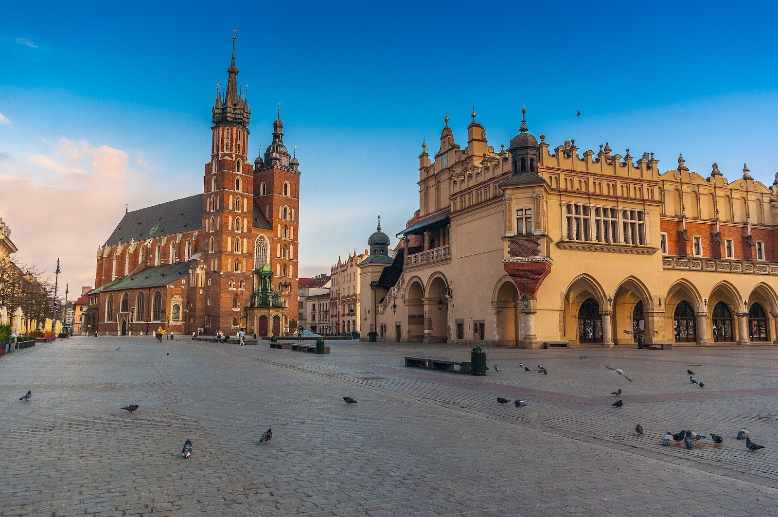 krakow traditional empty medieval market square with pigeons and basilic in background on a clear day