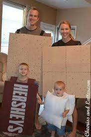 Image result for smores family costume