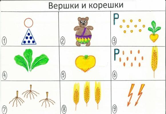 http://top-bal.ru/pars_docs/refs/56/55861/55861_html_m598ef70d.jpg