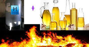 Soybean Oil - 2.jpg