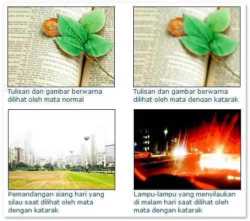 http://www.klinikmatanusantara.com/images/ktr3.jpg