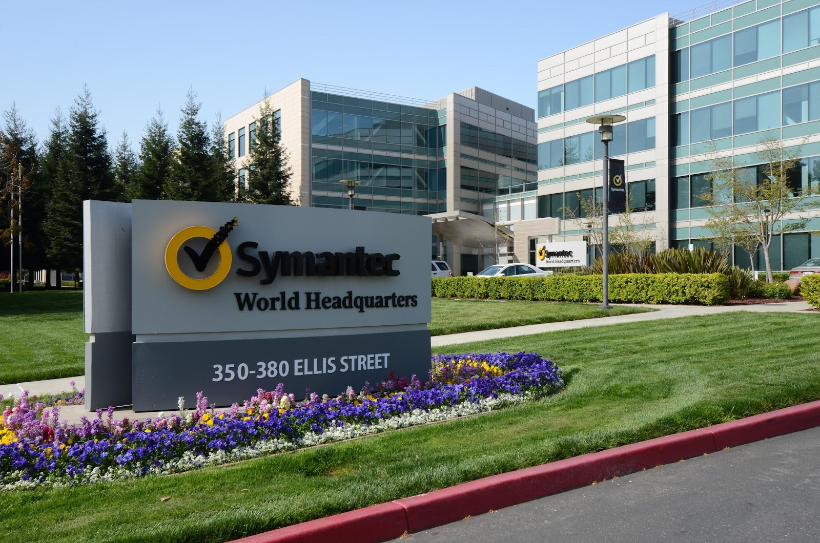 lifelock,symantec,business