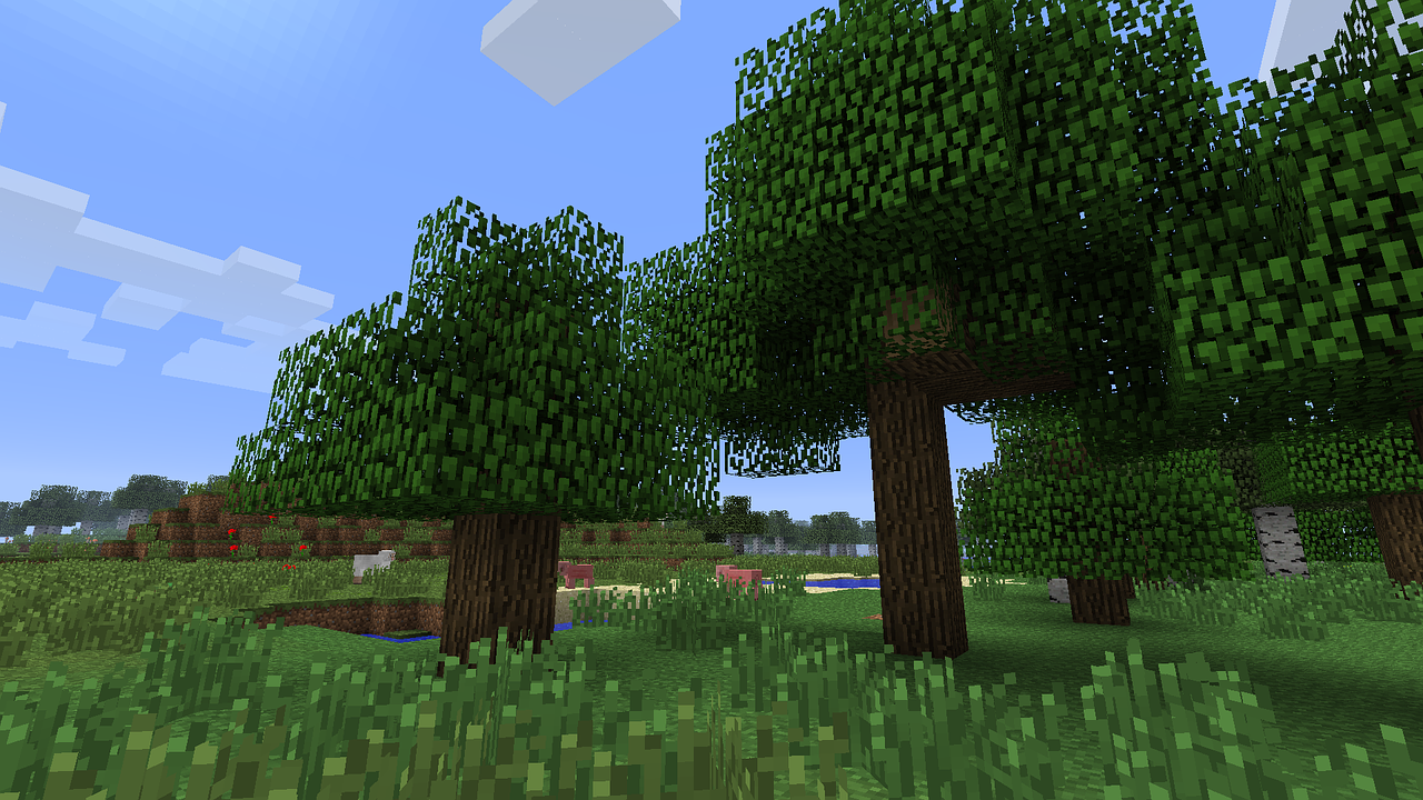 Plains biome in a Minecraft world