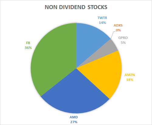 None dividend stocks